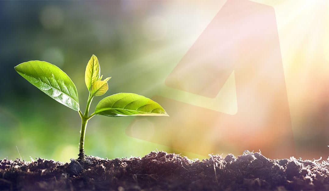 Almonty Industries Inc. Ankündigung der Ausweitung des Umwelt-, Sozial- und Governance-Programms (ESG)